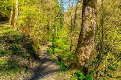 Wandern an der Wilden Endert - Balkonwege im Endertal
