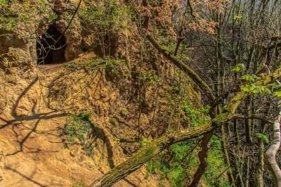 Steiler und glatter Zugang zur Höhle