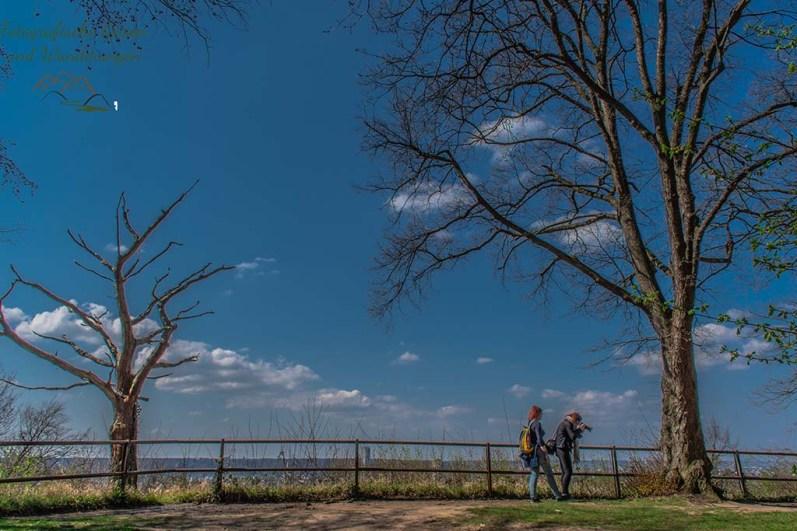 Aussicht auf Rhein und Bonn - Blauer See von oben betrachtet - Felsen und Höhlen im Siebengebirge