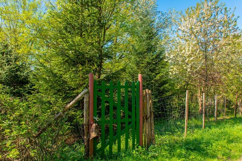 Grünes Gartentor - Auf dem Wildwiesenweg