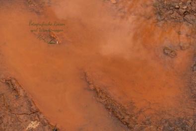 Der Boden enthält vermutlich Eisen, wegen der roten Farbe