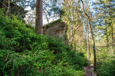 Hohe Felsen und grüne Tannen - Eifelsteig zwischen Monschau und Einruhr