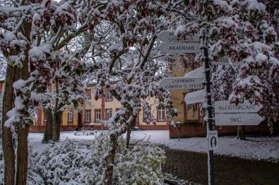 Eifelsteig_Steinfeld-Nettersheim_Marmagen (13)
