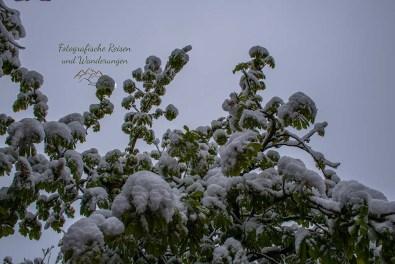 Winter im Mai
