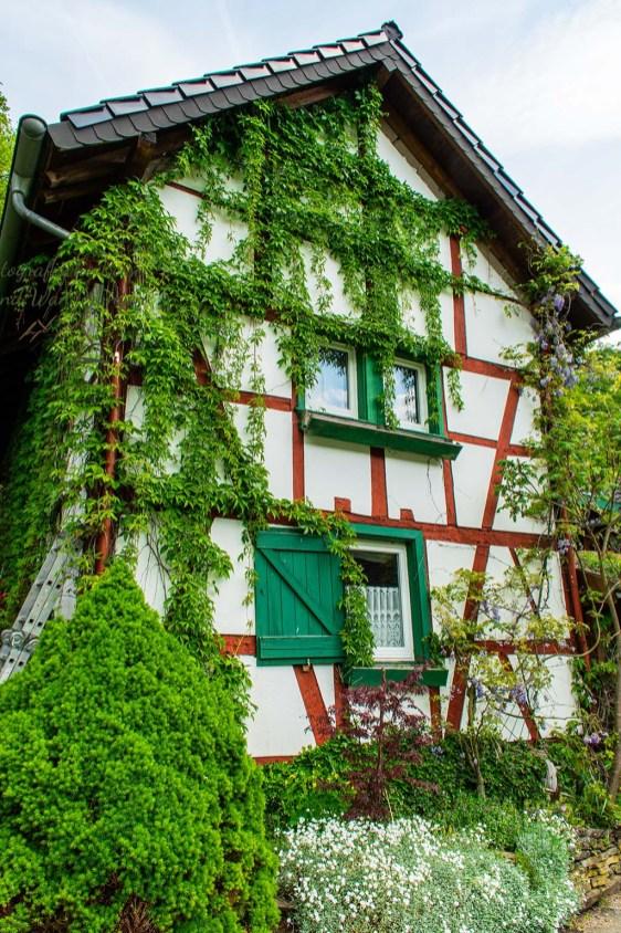 Am Rübenkeller - Abenteuer Wanderung im Sahrbachtal