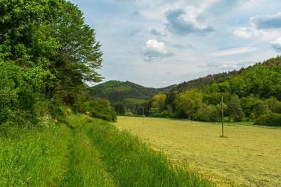 Gratwanderung und Sahrbachtal (160)
