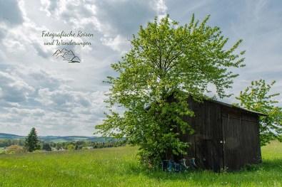 Gratwanderung und Sahrbachtal (94)