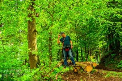 Mann auf Baumstamm