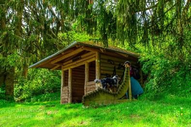Hochsimmerhütte