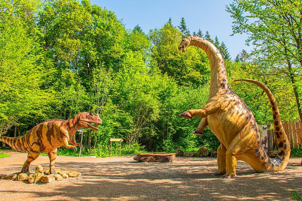 Die Teufelsschlucht und Dinosaurierpark