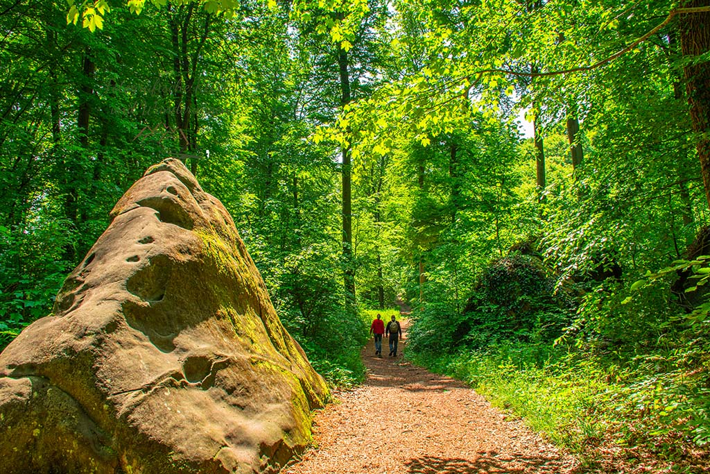 Dicke Felsen zieren die Wege
