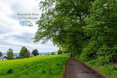 Wanderweg am Rande von Horbach