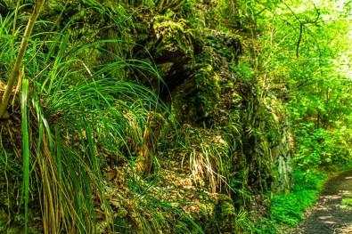 Eine Höhle im Schiefergestein