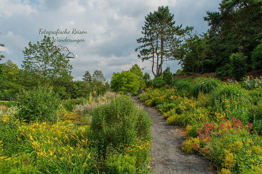 Grünflächen im Kurpark Daun - Der Eifelsteig und die Maare
