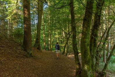 Naturpark Bergisches Land-Wandern zum Entspannen