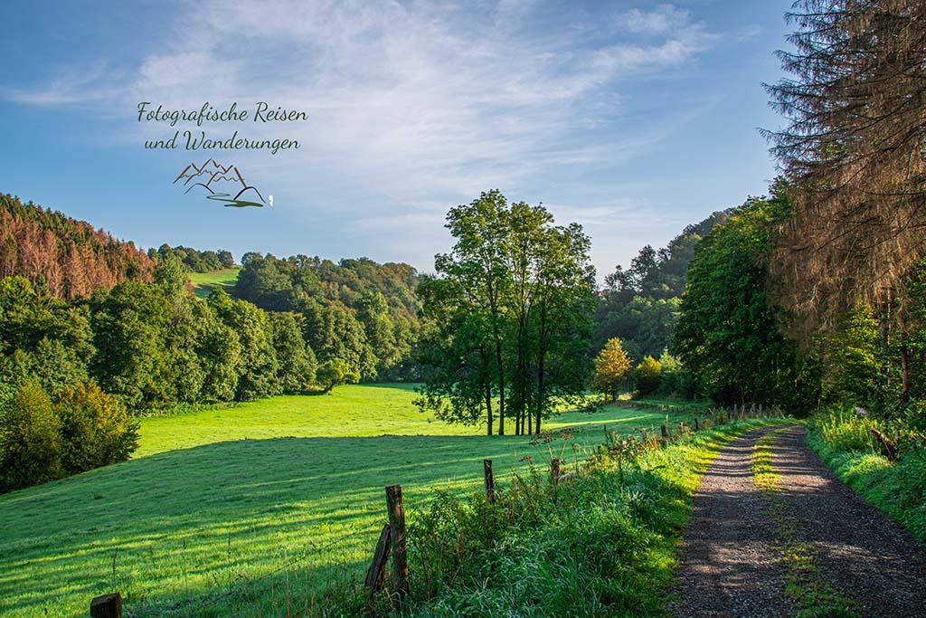 Herrliches Herbstwetter beim Naafbachtal wandern