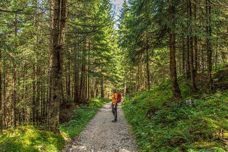 Katja auf dem geschotterten Waldweg