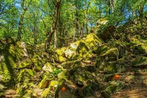 Rote Punkte auf den Felsen als Wegweiser