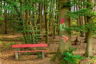 Bank und Baum, die farbliche Komposition