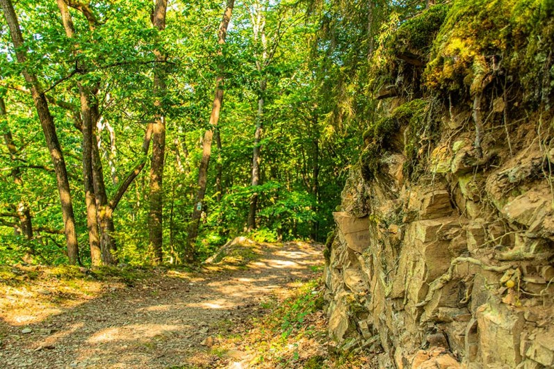 Afu dem Weg hinunter zum Braxbach