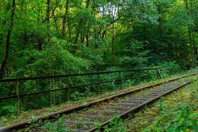 Die Schienen der Brexbachtalbahn