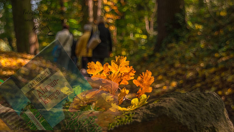 Krimineller Spaziergang im Rauscher Park – Vulkanpark