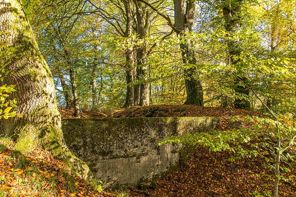 Mauerreste der Heckenmühle
