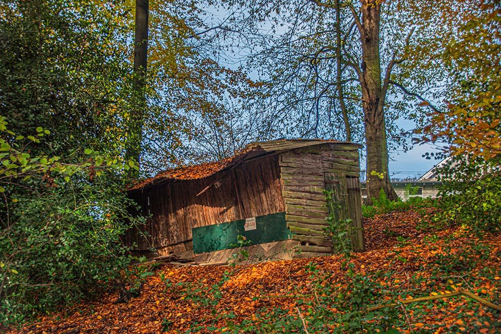 Bergische Mühlen - Waldidylle