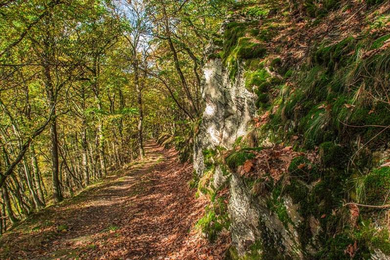 Herbst im Wanderparadies bei Kempenich