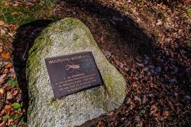 Arboretum Burgholz (63)
