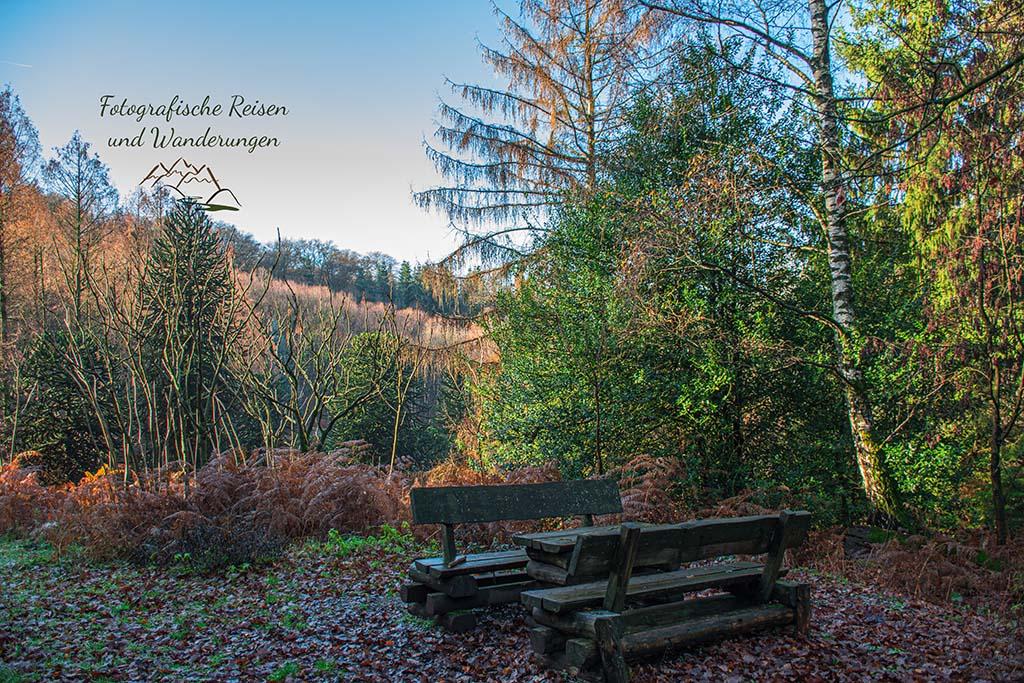 Rastplatz im Arboretum Burgholz