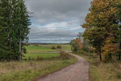 Auf dem Weg zurück nach Nettersheim