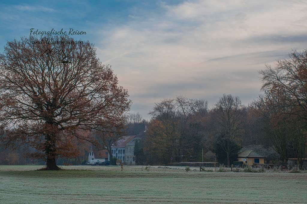 Wittringer Wald und Schloss Wittringen