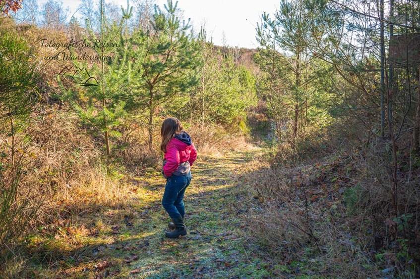 Ettringer Lay -Überraschend in die Eifel