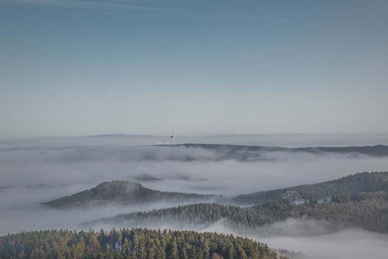 Eifelwinter - Weitblick Wanderweg Herresbach