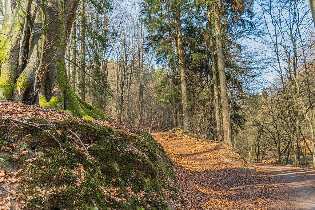 Alte Wege im Bergischen Land