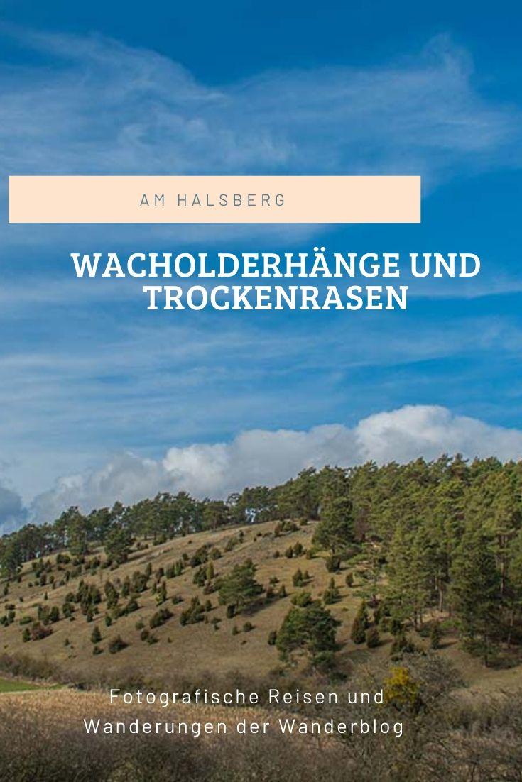 Wacholderhänge und Trockenrasen am Halsberg