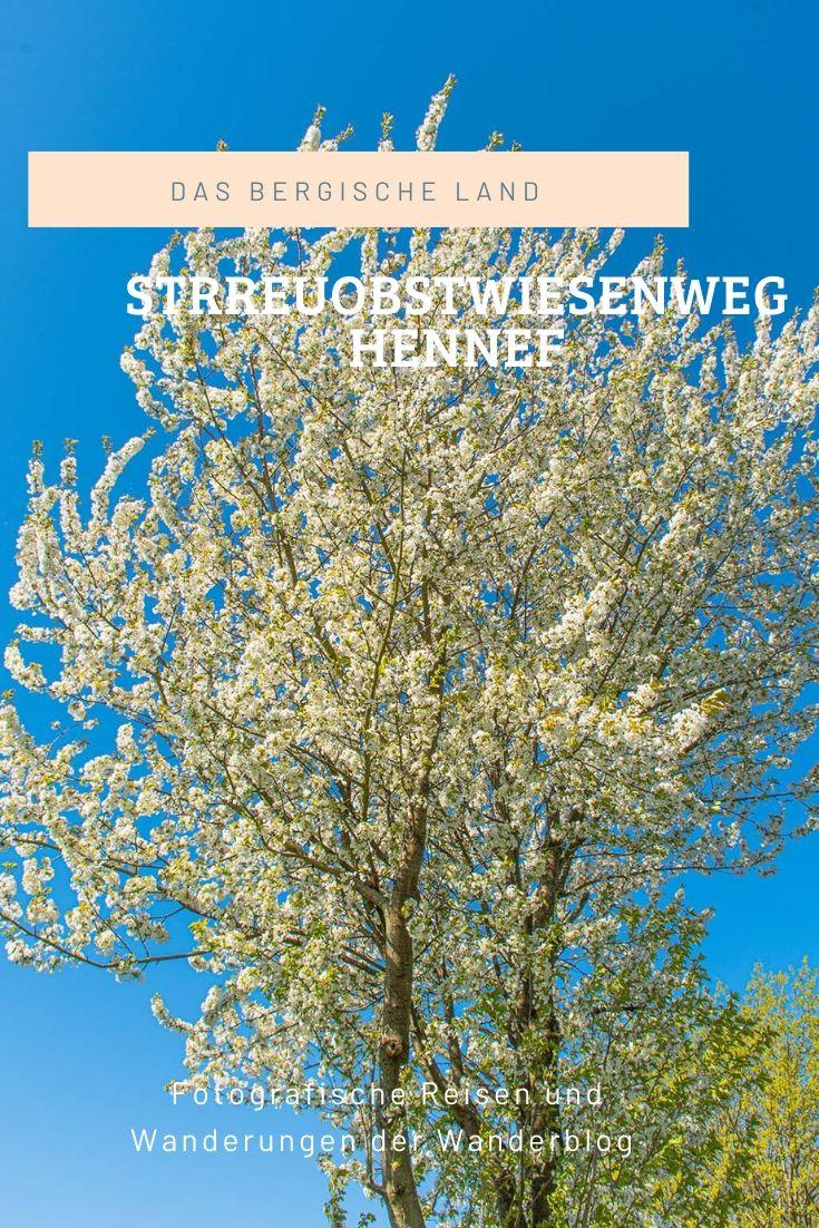 Streuobstwiesenweg Hennef