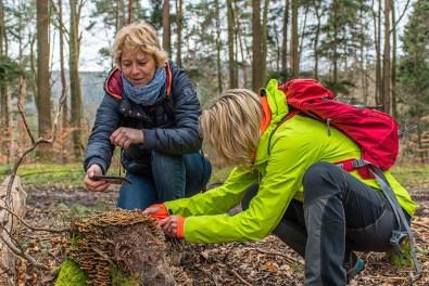 Wanderungen für die Seele Pfalz-Fotografinnen im Wald