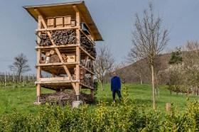 Markus Jäger an seinem Herzensprojekt - XXL Insektenhotel
