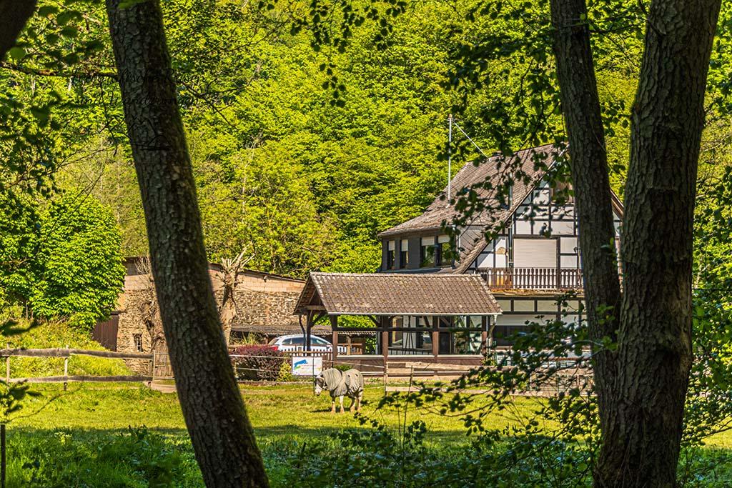 Eckmühle an der Stierwiese