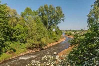 Hier fließt die Erft in den Rhein