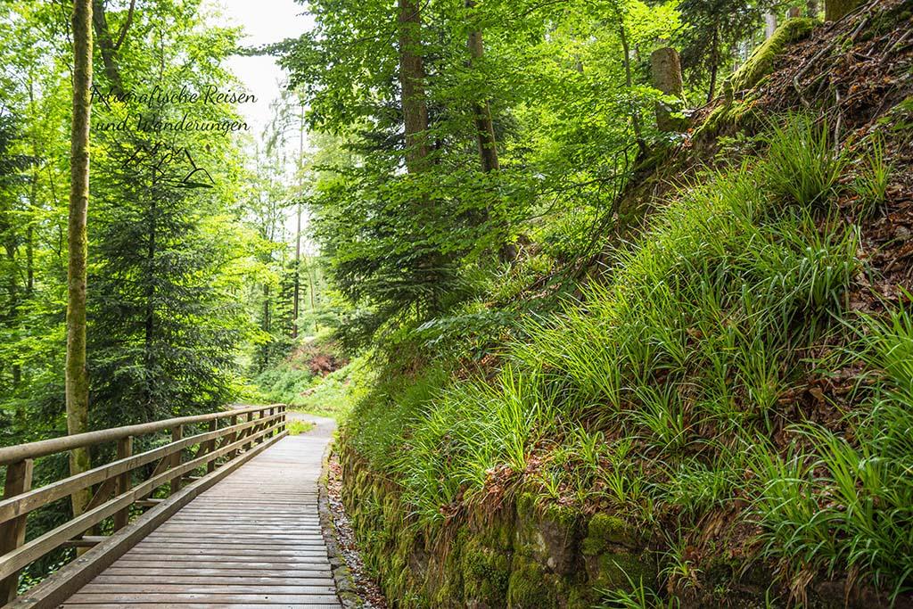 Wildeline - Hängebrücke suchen