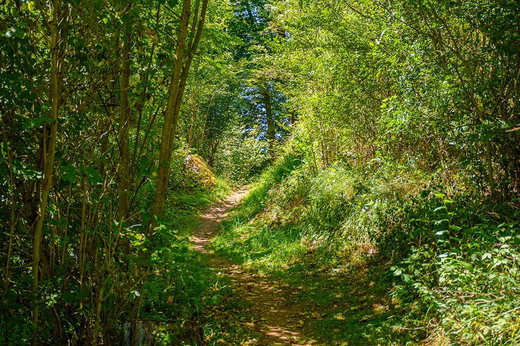 Eifelschleife Naturpfad