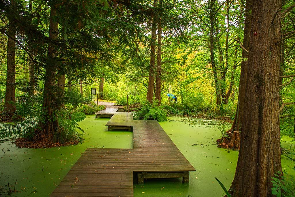 Botanischer Garten Bochum – Ausflugstipp in den Pott