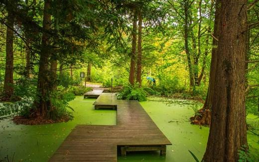 Botanischer Garten Bochum - Ausflugstipp in den Pott
