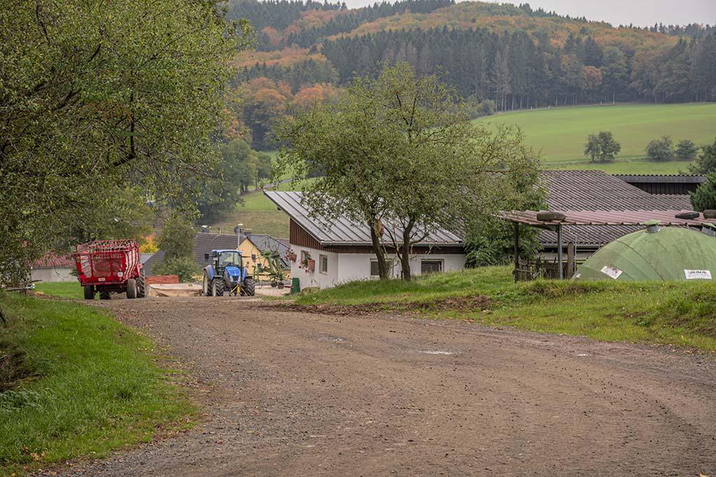 HeimatSpur Alte Eiche