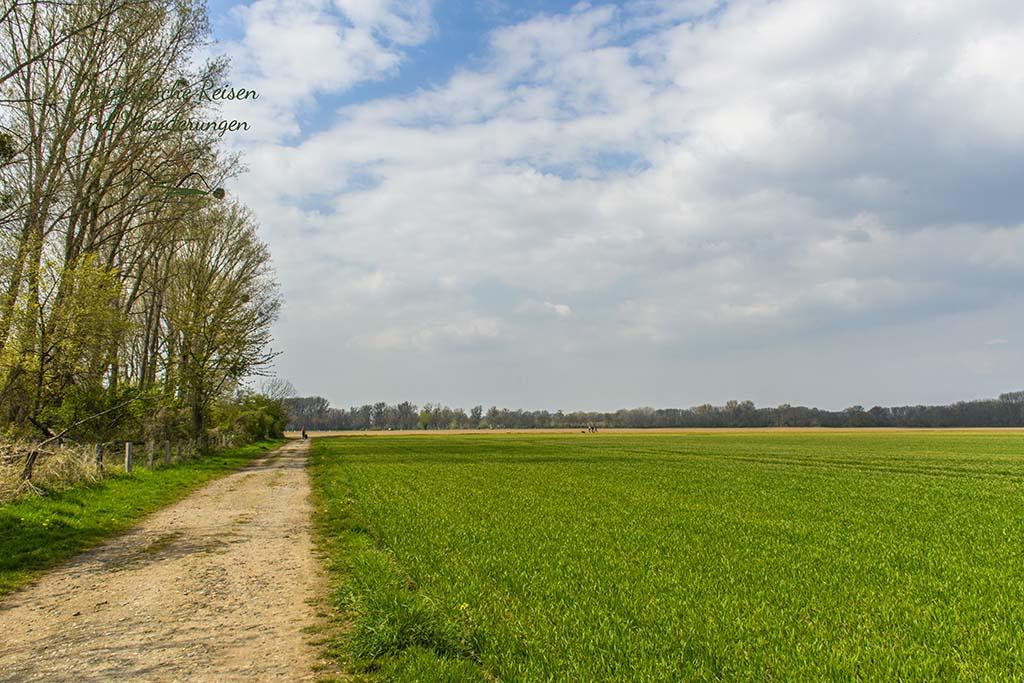 Richtung Haus Bürgel