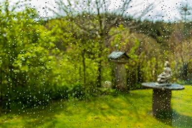 Regen am Fenster-Die Eifel ruft
