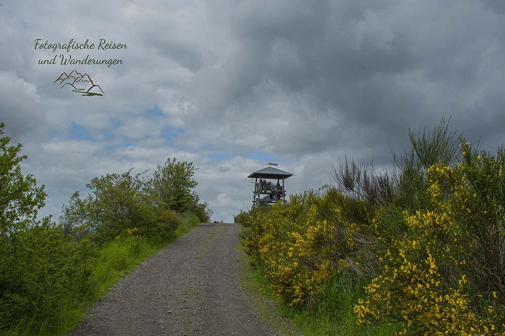 Der Turm am Landesblick
